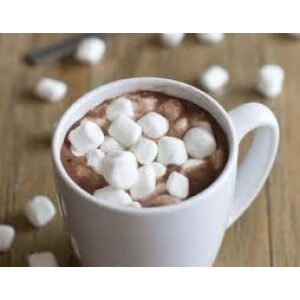Hot Chocolate & Malted Drinks